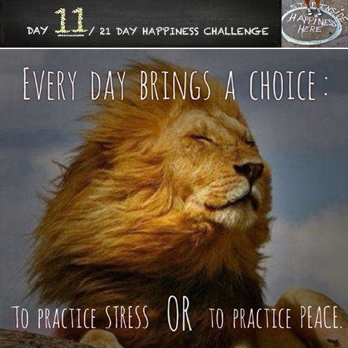 21-day-challenge-day-113
